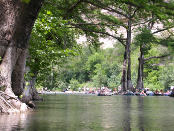 Majestic Cypress trees line the scenic banks of the Guadalupe River in Canyon Lake, TX as people float by enjoying the view from their inner tubes.